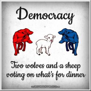 democracy - 2 wolves 1 lamb voting